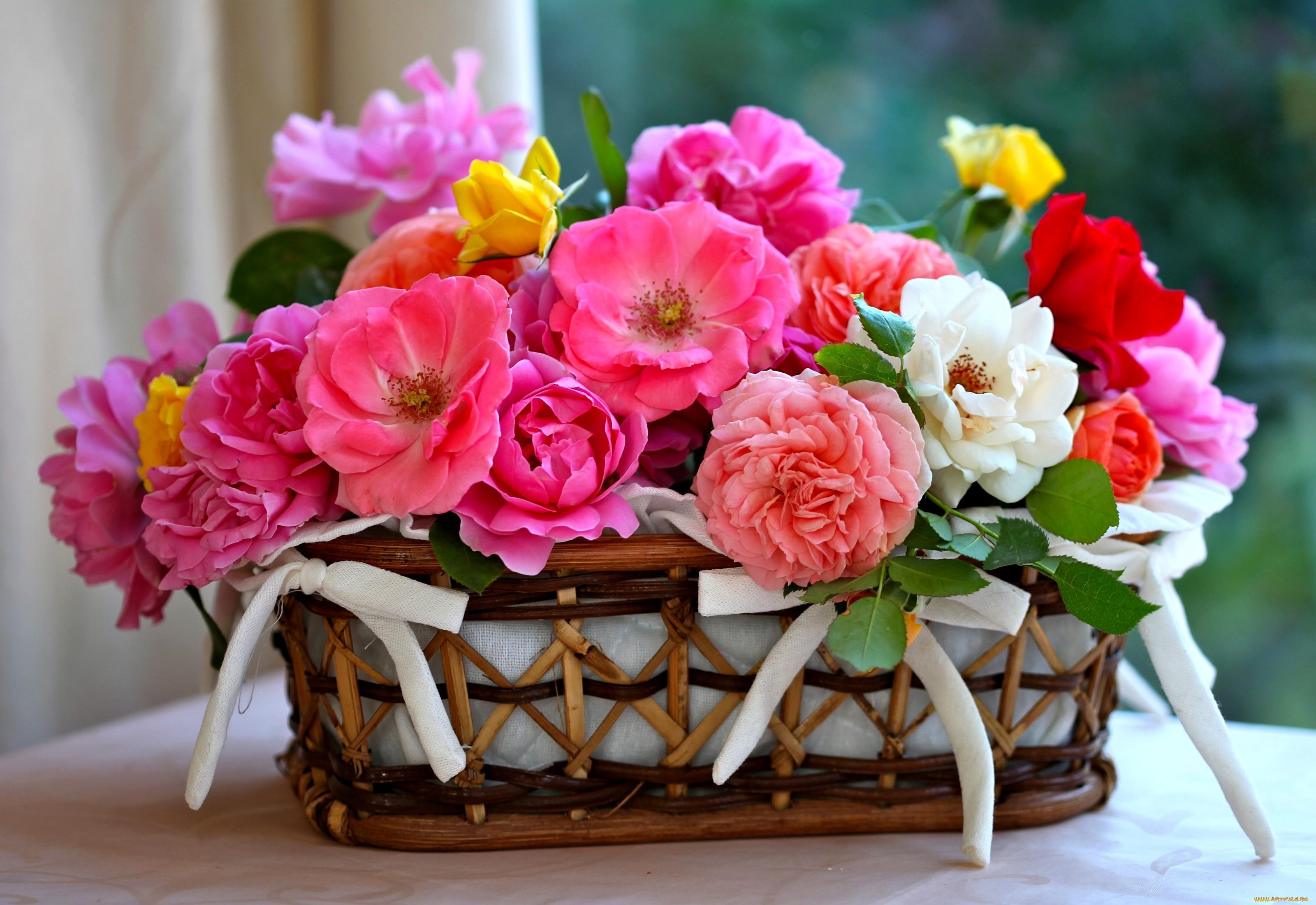 цветы на праздник картинка для ручного